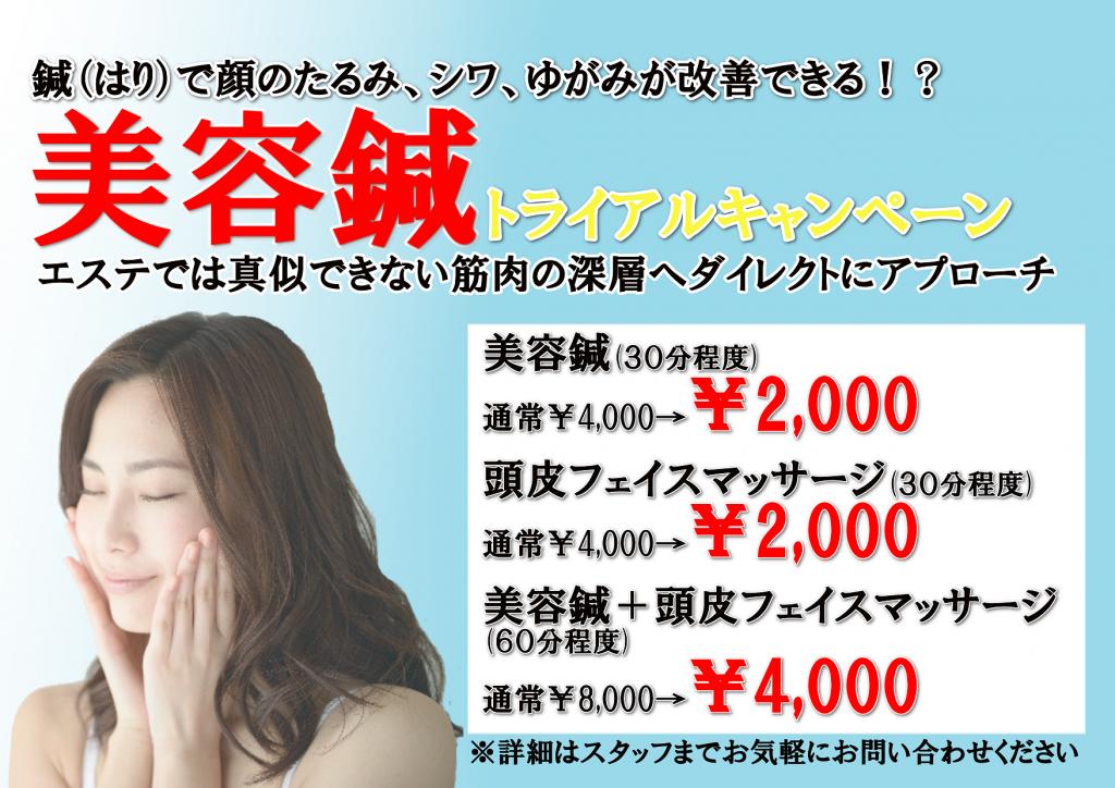 美容鍼キャンペーンPOP